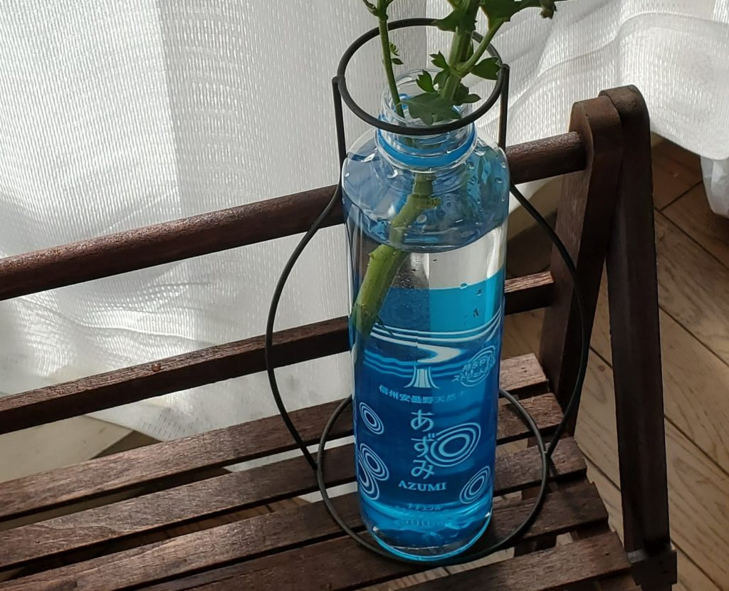put a flower in the azumi pet bottle vase