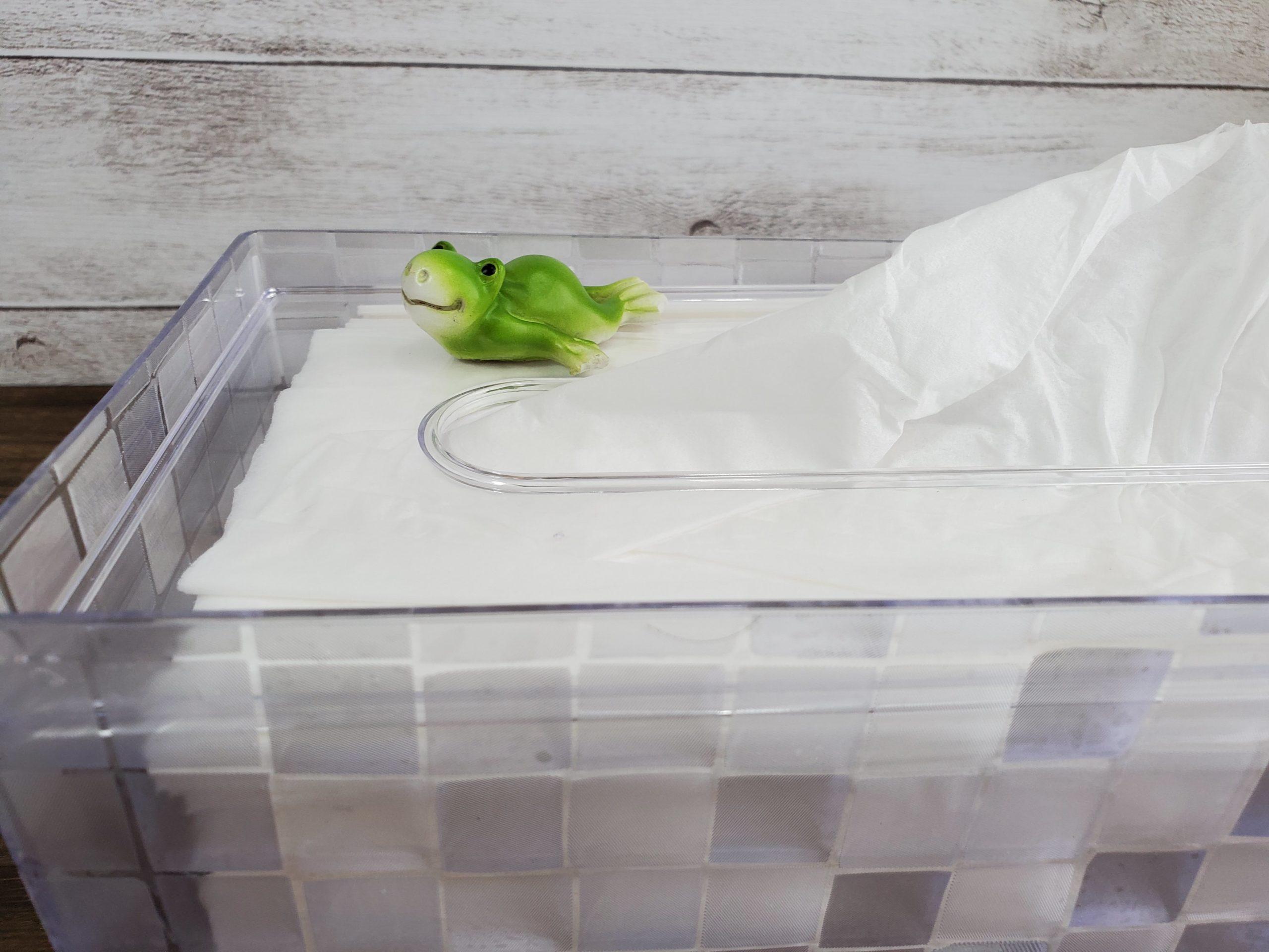 box tissues-clear-case11